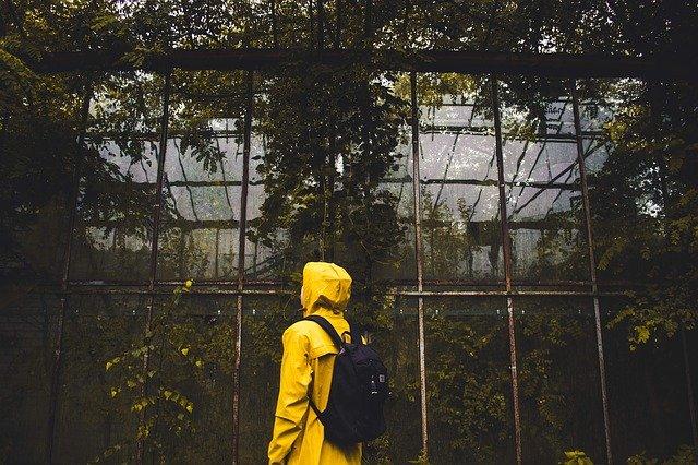zarostlý skleník